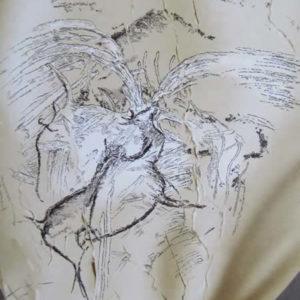 L'art de Chauvet, la science, le volcanisme et le territoire