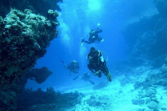 diving-813028_640