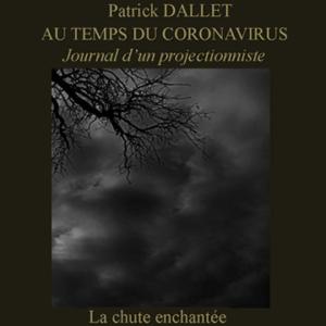 Journal 8 – La chute enchantée