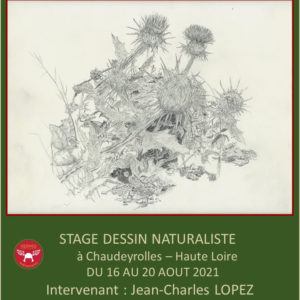 Stage de dessin naturaliste du 16 au 20 août 2021