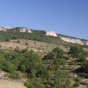 5. Parcours ornithologique – L'Ardèche Méridionale <br/> le samedi 19 juin 2021
