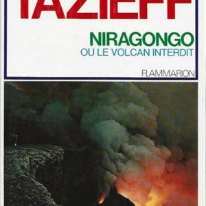 Niragonogo ou le volcan interdit